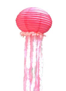 jellyfish-W