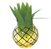 WHIMSICAL PINEAPPLE LIGHT
